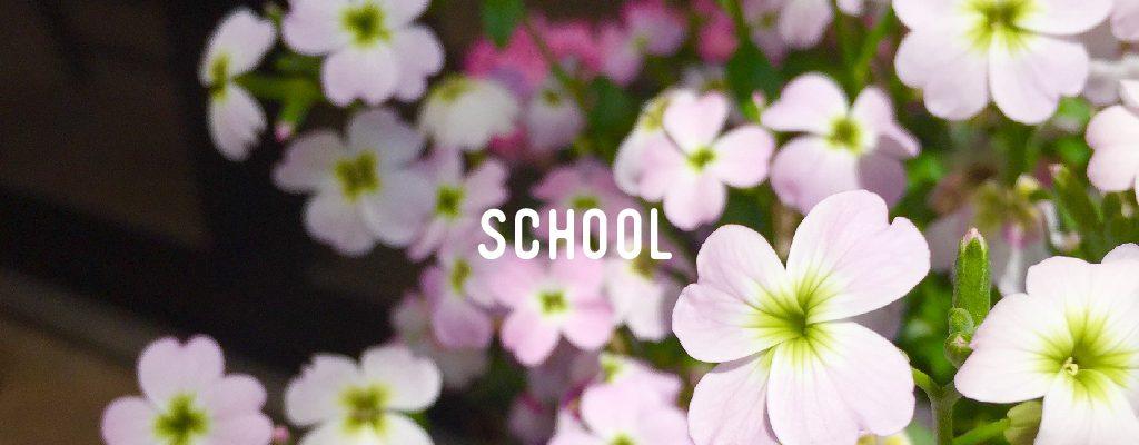 sv_title_school